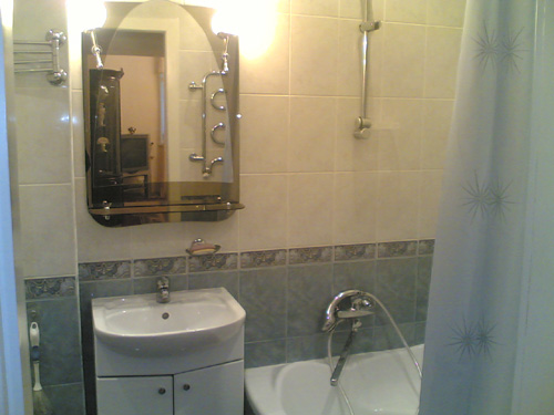 Интерьер ванной комнаты (фото-23)