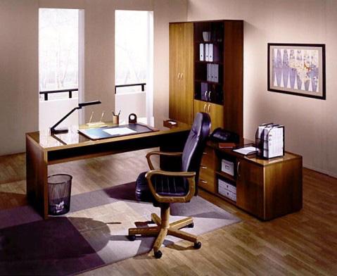 Интерьер кабинета (фото-16)